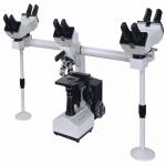 Multi-Viewing Biological Microscope LMB-A10